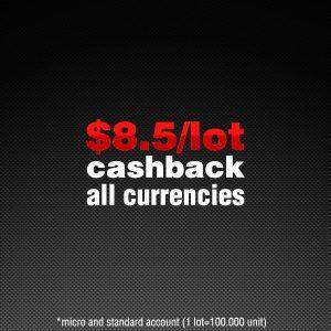 Cashback Trading Forex